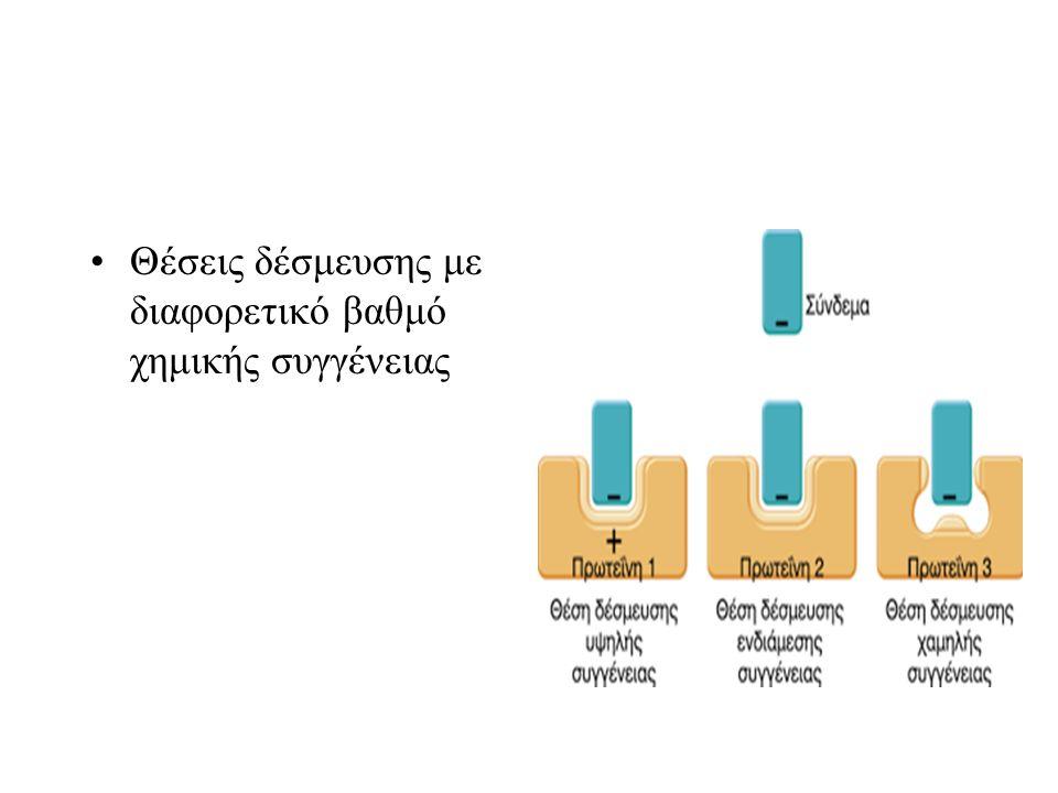 Θέσεις δέσμευσης με διαφορετικό βαθμό χημικής συγγένειας