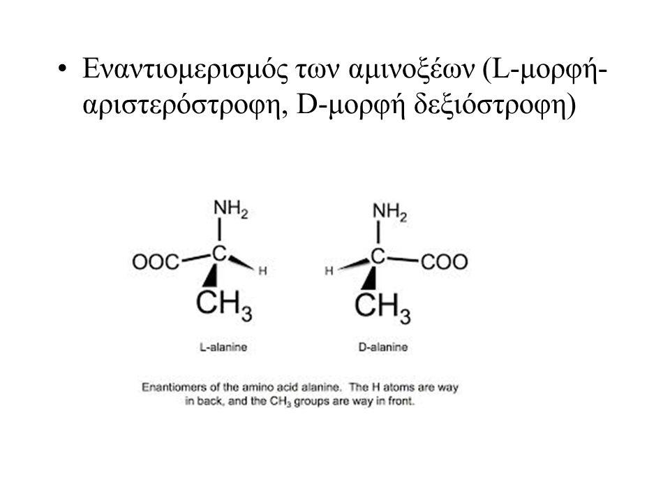 Αλιφατικά Αμινοξέα Amino acids: (Aliphatic)
