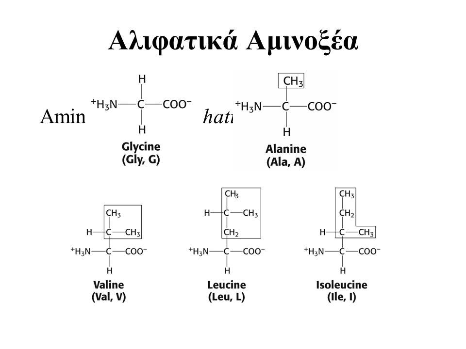 Δύο θέσεις δέσμευσης στην πρωτεΐνη (ρυθμιστική και λειτουργική θέση) Αλλαγή στο σχήμα της λειτουργικής θέσης της πρωτεΐνης οδηγεί σε αύξηση ή μείωση της χημικής συγγένειας Μεταβολή της δραστικότητας μίας πρωτεΐνης διαμέσου του κορεσμού της ρυθμιστικής θέσης ή της συγκέντρωσης του τροποποιητή Συνέργεια είναι η προοδευτική αύξηση της συγγένειας πολυπεπτιδικών αλυσίδων έπειτα από δέσμευση συνδέματος και πρωτείνης σε μία πολυπεπτιδική αλυσίδα (αιμοσφαρίνη και Ο2)