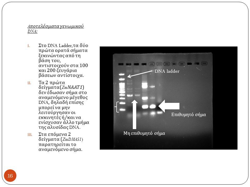 A ποτελέσματα γενωμικού DNA: i.