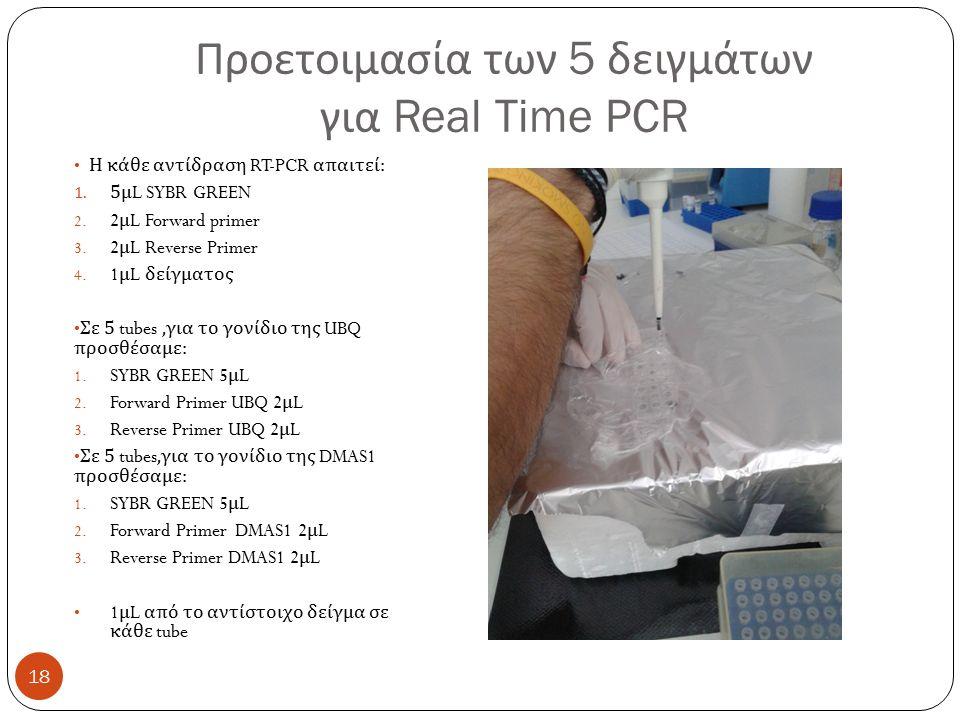 Προετοιμασία των 5 δειγμάτων για Real Time PCR h Η κάθε αντίδραση RT-PCR απαιτεί : 1.