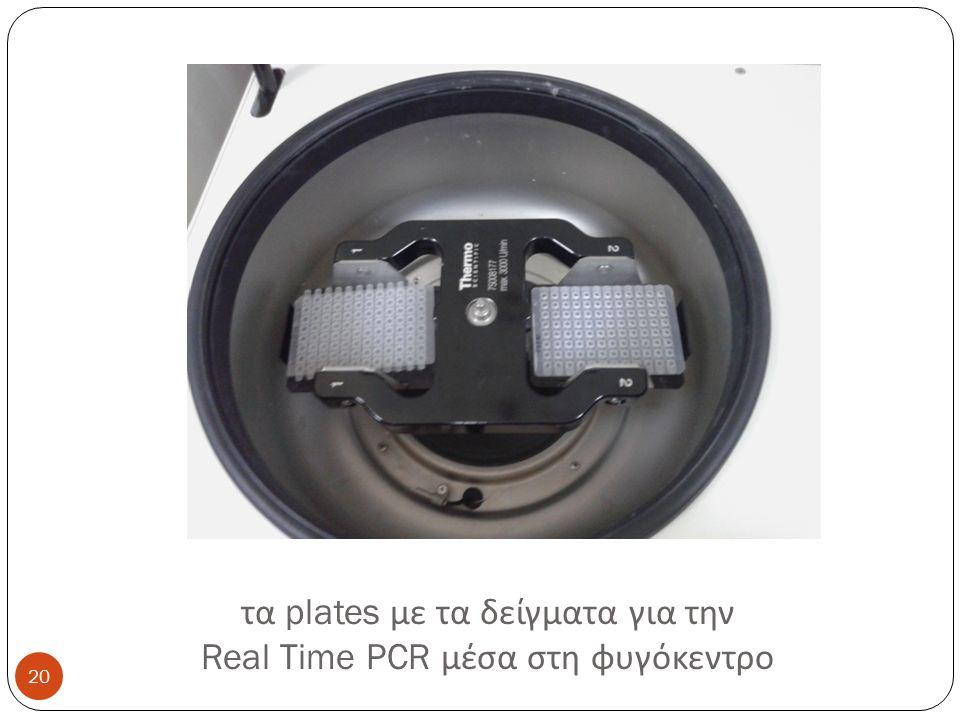 τα plates με τα δείγματα για την Real Time PCR μέσα στη φυγόκεντρο 20
