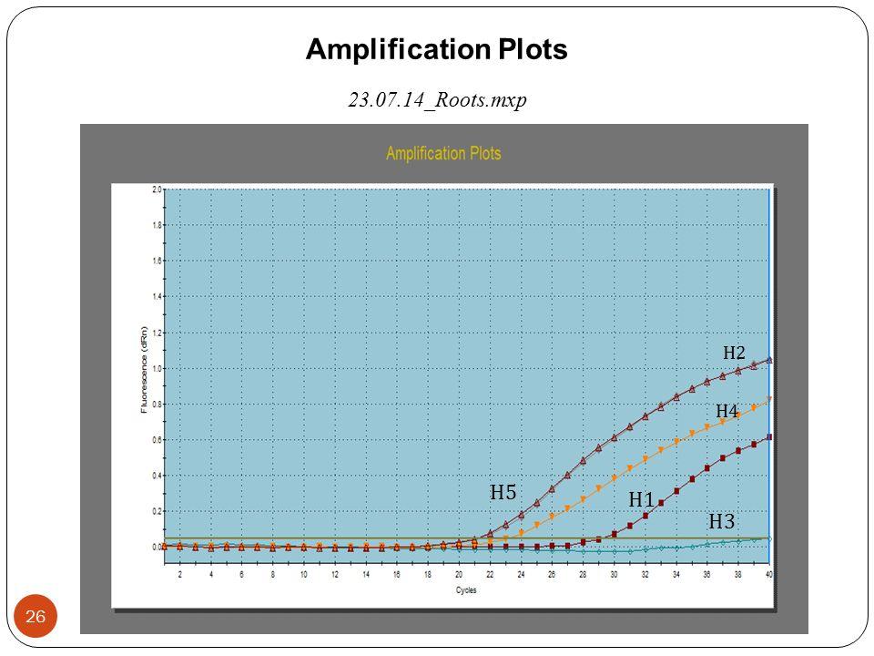 Amplification Plots 23.07.14_Roots.mxp Η3Η3 Η1Η1 Η2Η2 Η4Η4 Η5Η5 26