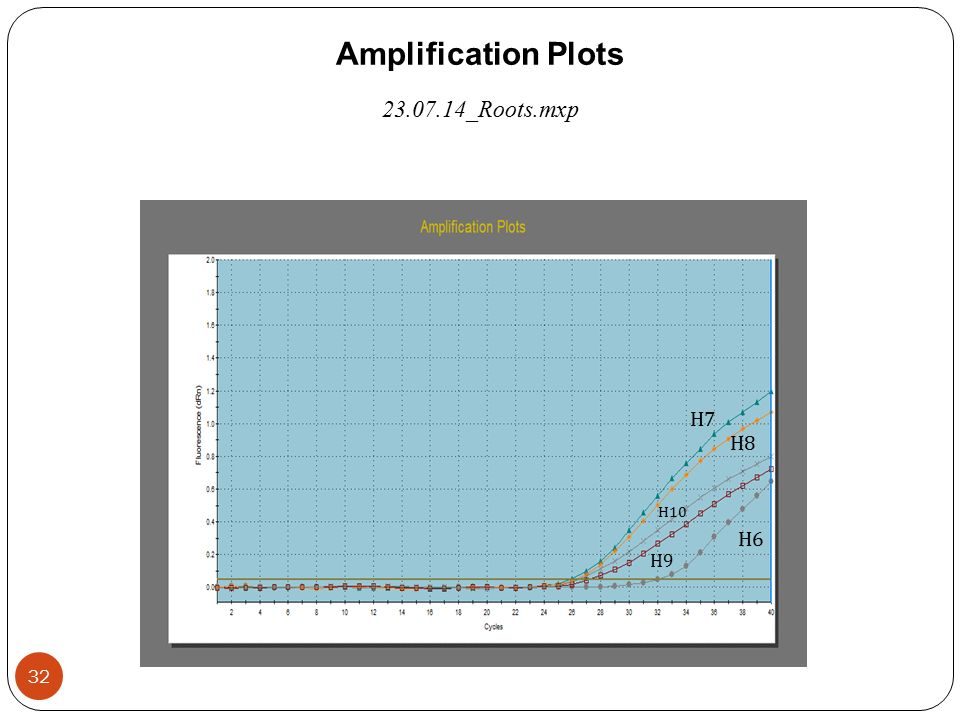 Amplification Plots 23.07.14_Roots.mxp Η6Η6 Η9Η9 Η 10 Η8Η8 Η7Η7 32