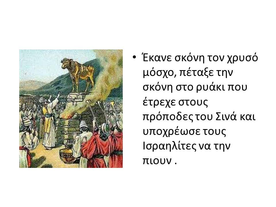 Με αυτό ο Μωυσής ήθελε να δείξει την μηδαμινότητα του ειδώλου και ότι ο λαός ενσωματώθηκε την αμαρτία του και θα υποστεί τις συνέπειές της.