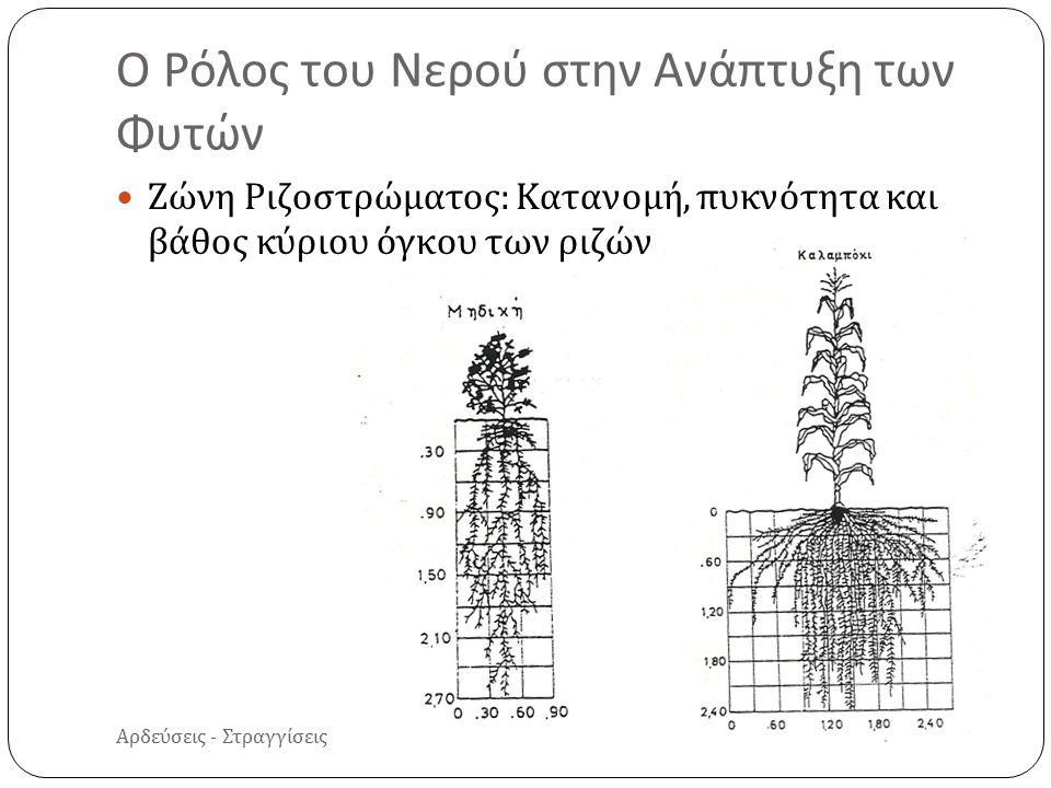 Αρδεύσεις - Στραγγίσεις Ζώνη Ριζοστρώματος : Κατανομή, πυκνότητα και βάθος κύριου όγκου των ριζών Ο Ρόλος του Νερού στην Ανάπτυξη των Φυτών