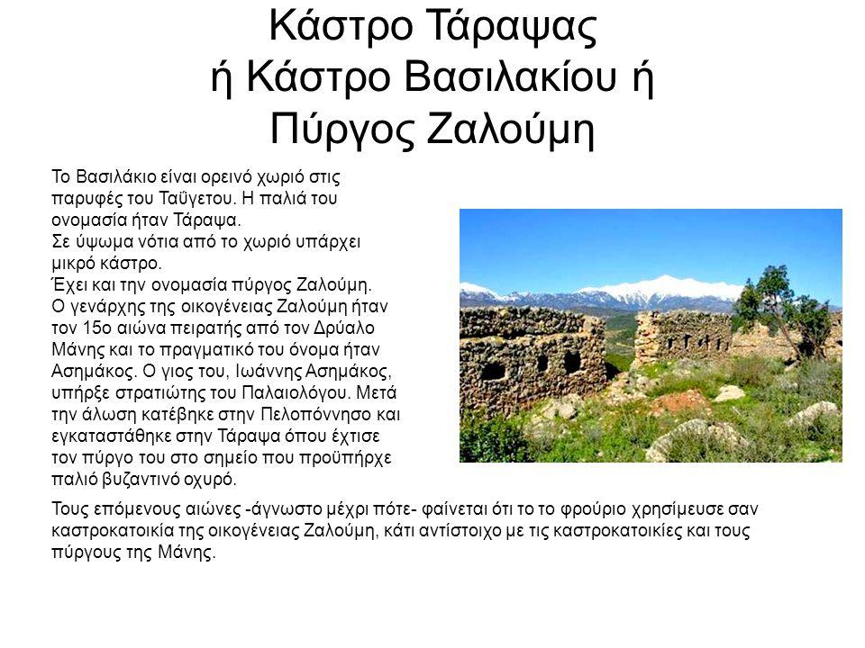 Κάστρο Τάραψας ή Κάστρο Βασιλακίου ή Πύργος Ζαλούμη Το Βασιλάκιο είναι ορεινό χωριό στις παρυφές του Ταΰγετου. Η παλιά του ονομασία ήταν Τάραψα. Σε ύψ