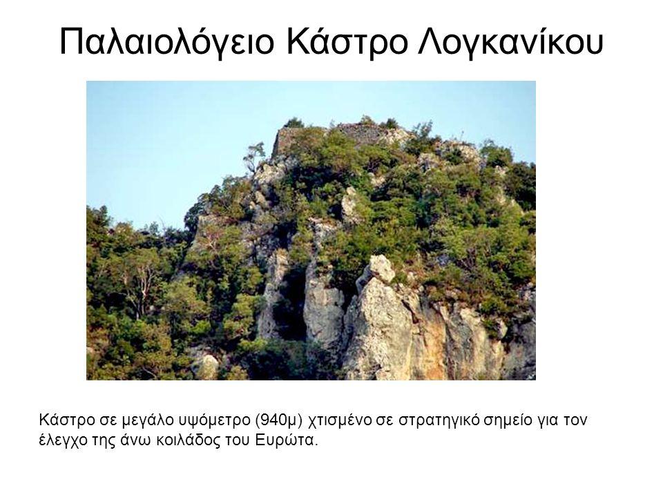 Παλαιολόγειο Κάστρο Λογκανίκου Κάστρο σε μεγάλο υψόμετρο (940μ) χτισμένο σε στρατηγικό σημείο για τον έλεγχο της άνω κοιλάδος του Ευρώτα.