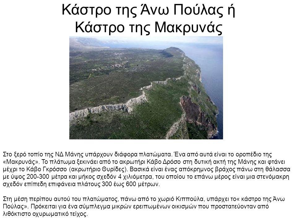 Κάστρο Τάραψας ή Κάστρο Βασιλακίου ή Πύργος Ζαλούμη Το Βασιλάκιο είναι ορεινό χωριό στις παρυφές του Ταΰγετου.
