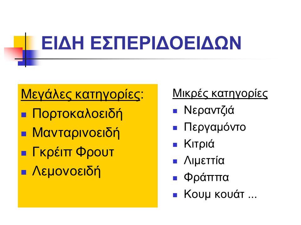 Μανταρινοειδή: 6.Μανταρινο-λιμέτιες Cleopatra: έχει μικρή εμπορική αξία, λόγω πολλών σπερμάτων.