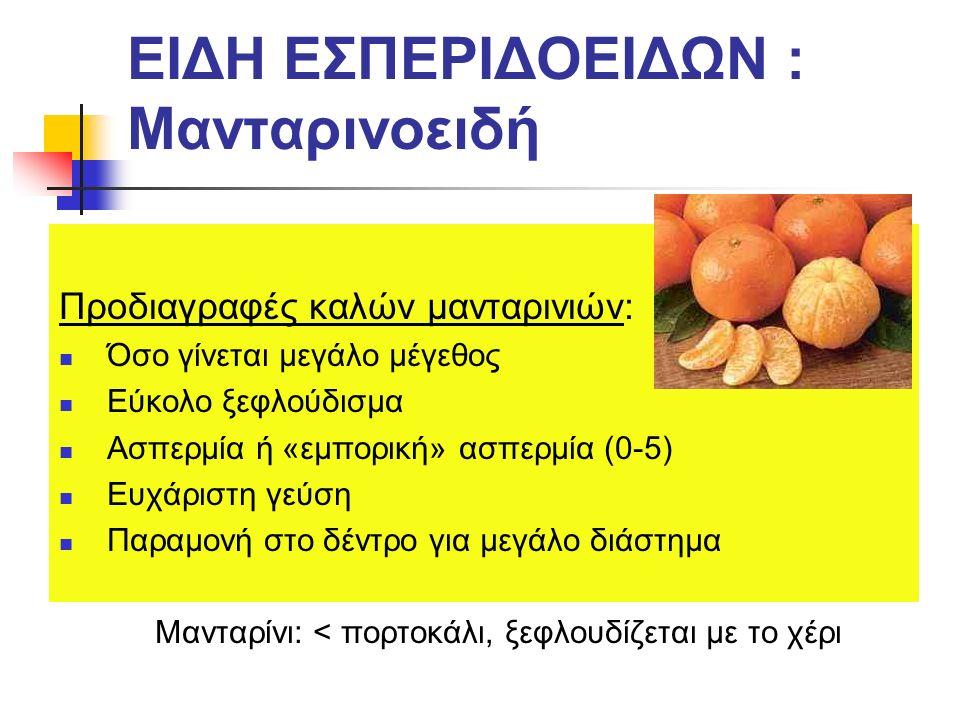 ΕΙΔΗ ΕΣΠΕΡΙΔΟΕΙΔΩΝ : Μανταρινοειδή Προδιαγραφές καλών μανταρινιών: Όσο γίνεται μεγάλο μέγεθος Εύκολο ξεφλούδισμα Ασπερμία ή «εμπορική» ασπερμία (0-5) Ευχάριστη γεύση Παραμονή στο δέντρο για μεγάλο διάστημα Μανταρίνι: < πορτοκάλι, ξεφλουδίζεται με το χέρι