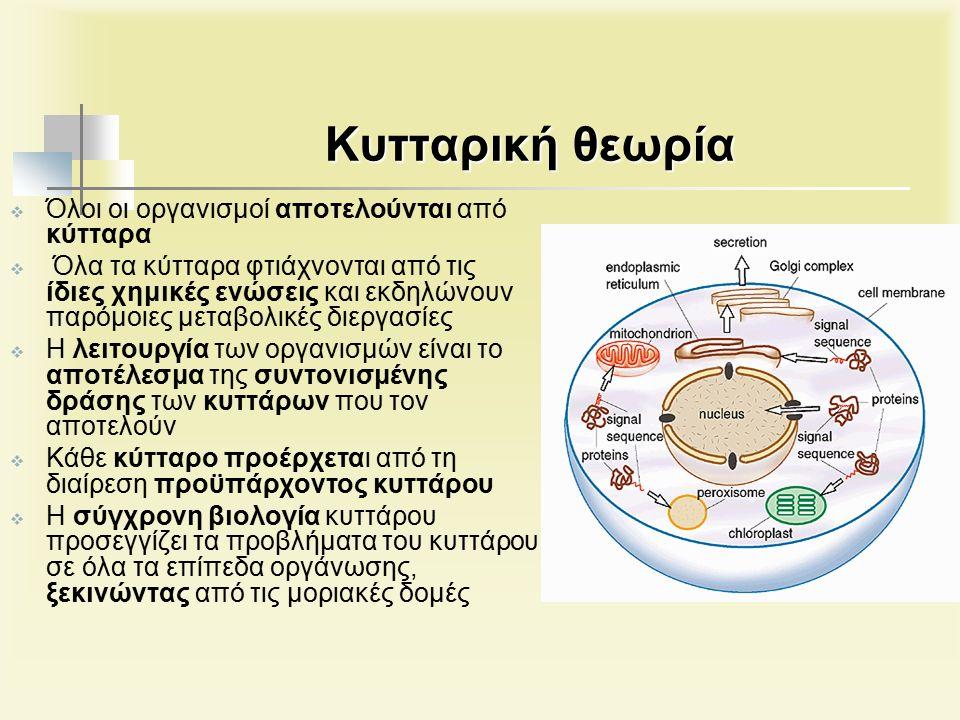 Kυτταρική θεωρία  Όλοι οι οργανισμοί αποτελούνται από κύτταρα  Όλα τα κύτταρα φτιάχνονται από τις ίδιες χημικές ενώσεις και εκδηλώνουν παρόμοιες μεταβολικές διεργασίες  Η λειτουργία των οργανισμών είναι το αποτέλεσμα της συντονισμένης δράσης των κυττάρων που τον αποτελούν  Κάθε κύτταρο προέρχεται από τη διαίρεση προϋπάρχοντος κυττάρου  Η σύγχρονη βιολογία κυττάρου προσεγγίζει τα προβλήματα του κυττάρου σε όλα τα επίπεδα οργάνωσης, ξεκινώντας από τις μοριακές δομές