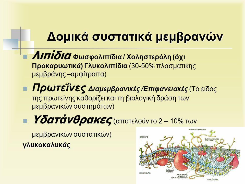 Δομικά συστατικά μεμβρανών Λιπίδια Φωσφολιπίδια / Χοληστερόλη (όχι Προκαρυωτικά) Γλυκολιπίδια (30-50% πλασματικης μεμβράνης –αμφίτροπα) Πρωτεΐνες Διαμεμβρανικές /Επιφανειακές (Το είδος της πρωτεΐνης καθορίζει και τη βιολογική δράση των μεμβρανικών συστημάτων) Υδατάνθρακες ( αποτελούν το 2 – 10% των μεμβρανικών συστατικών)γλυκοκαλυκάς