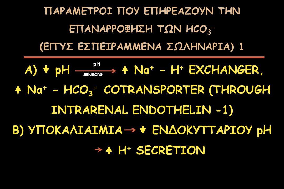 ΠΑΡΑΜΕΤΡΟΙ ΠΟΥ ΕΠΗΡΕΑΖΟΥΝ ΤΗΝ ΕΠΑΝΑΡΡΟΦΗΣΗ ΤΩΝ HCO 3 - (ΕΓΓΥΣ ΕΣΠΕΙΡΑΜΜΕΝΑ ΣΩΛΗΝΑΡΙΑ) 1 A)  pH Na + - H + EXCHANGER, Na + - HCO 3 - COTRANSPORTER (TH