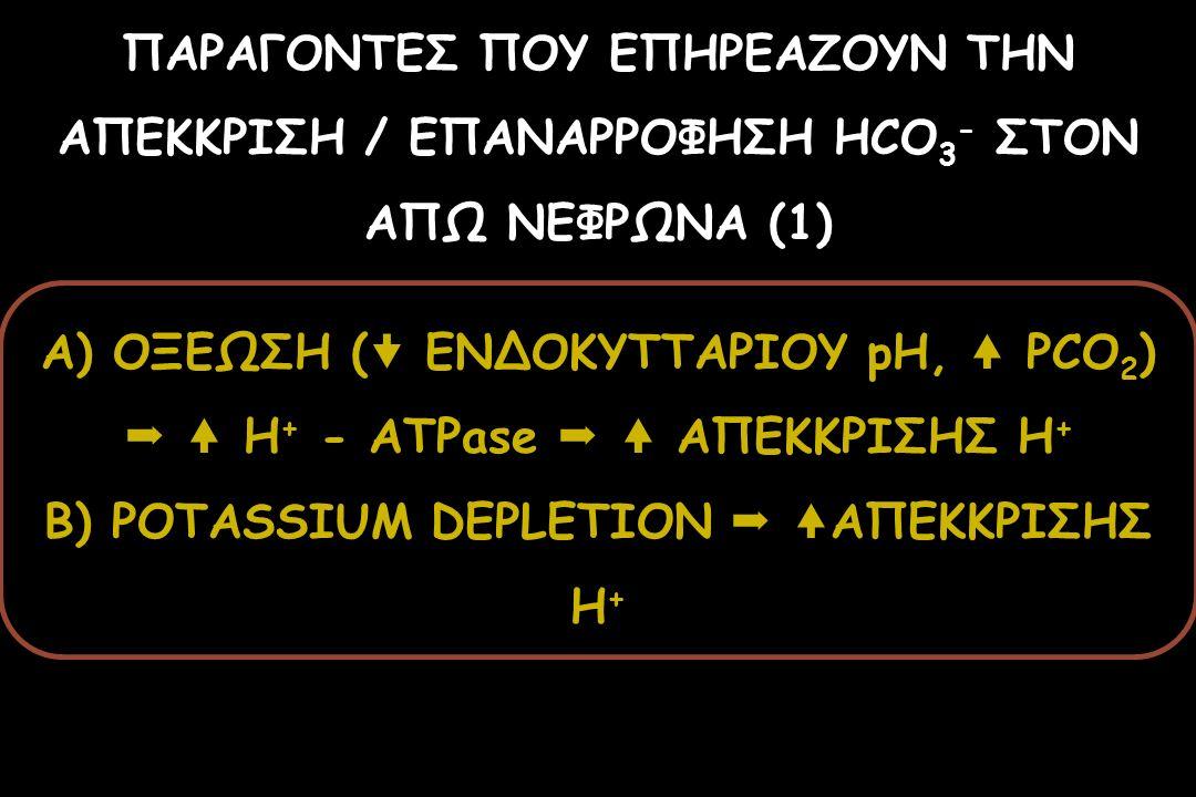 ΠΑΡΑΓΟΝΤΕΣ ΠΟΥ ΕΠΗΡΕΑΖΟΥΝ ΤΗΝ ΑΠΕΚΚΡΙΣΗ / ΕΠΑΝΑΡΡΟΦΗΣΗ HCO 3 - ΣΤΟΝ ΑΠΩ ΝΕΦΡΩΝΑ (1) A) ΟΞΕΩΣΗ (  ΕΝΔΟΚΥΤΤΑΡΙΟΥ pH, PCO 2 )  H + - ATPase  ΑΠΕΚΚΡΙΣΗ