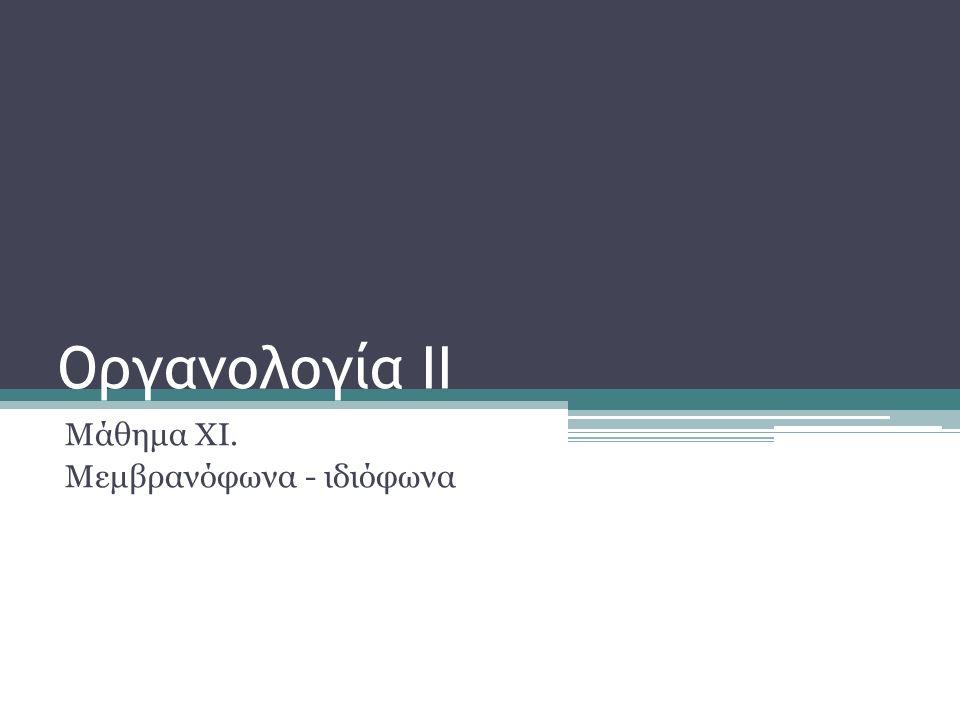 Οργανολογία ΙΙ Μάθημα ΧΙ. Μεμβρανόφωνα - ιδιόφωνα