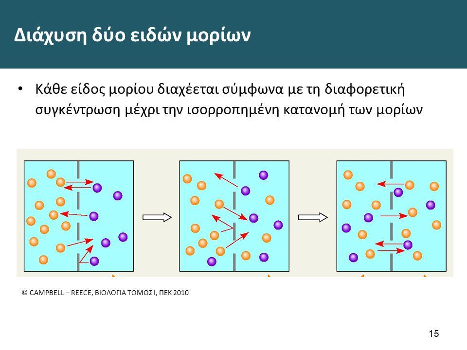 Διάχυση δύο ειδών μορίων Κάθε είδος μορίου διαχέεται σύμφωνα με τη διαφορετική συγκέντρωση μέχρι την ισορροπημένη κατανομή των μορίων 15 © CAMPBELL – REECE, ΒΙΟΛΟΓΙΑ ΤΟΜΟΣ Ι, ΠΕΚ 2010
