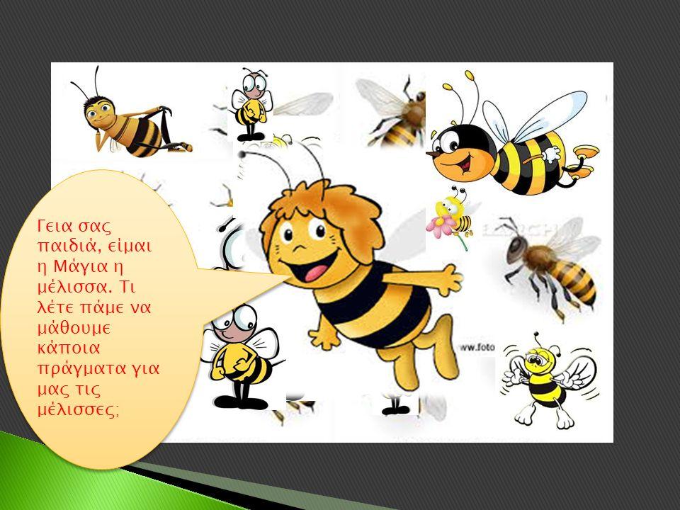 Γεια σας παιδιά, είμαι η Μάγια η μέλισσα.