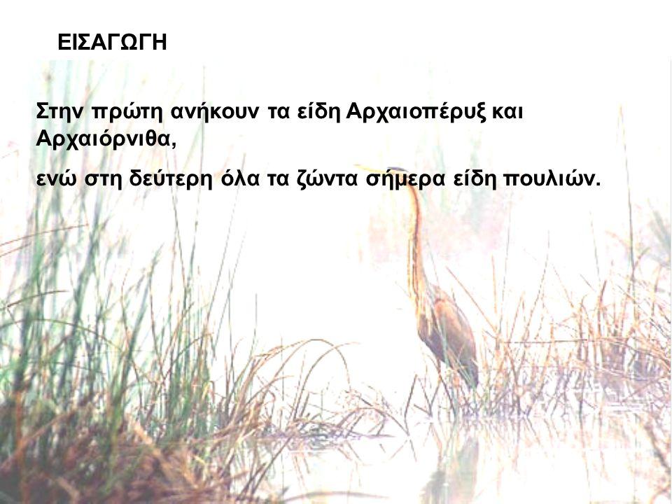ΕΙΣΑΓΩΓΗ Στην πρώτη ανήκουν τα είδη Αρχαιοπέρυξ και Αρχαιόρνιθα, ενώ στη δεύτερη όλα τα ζώντα σήμερα είδη πουλιών.