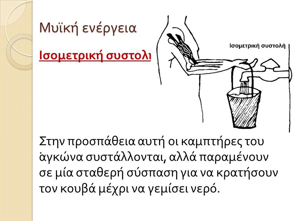 Μυϊκή ενέργεια Ισομετρική συστολή. Στην προσπάθεια αυτή οι καμπτήρες του αγκώνα συστάλλονται, αλλά παραμένουν σε μία σταθερή σύσπαση για να κρατήσουν
