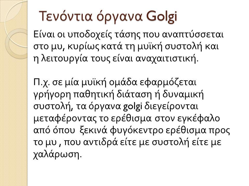 Τενόντια όργανα Golgi Είναι οι υποδοχείς τάσης που αναπτύσσεται στο μυ, κυρίως κατά τη μυϊκή συστολή και η λειτουργία τους είναι αναχαιτιστική. Π. χ.