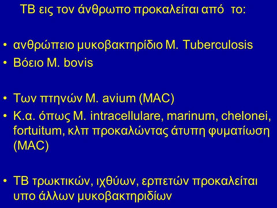 ΤΒ εις τον άνθρωπο προκαλείται από το: ανθρώπειο μυκοβακτηρίδιο M.