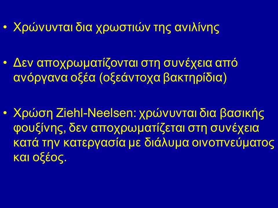 Χρώνυνται δια χρωστιών της ανιλίνης Δεν αποχρωματίζονται στη συνέχεια από ανόργανα οξέα (οξεάντοχα βακτηρίδια) Χρώση Ziehl-Neelsen: χρώνυνται δια βασικής φουξίνης, δεν αποχρωματίζεται στη συνέχεια κατά την κατεργασία με διάλυμα οινοπνεύματος και οξέος.
