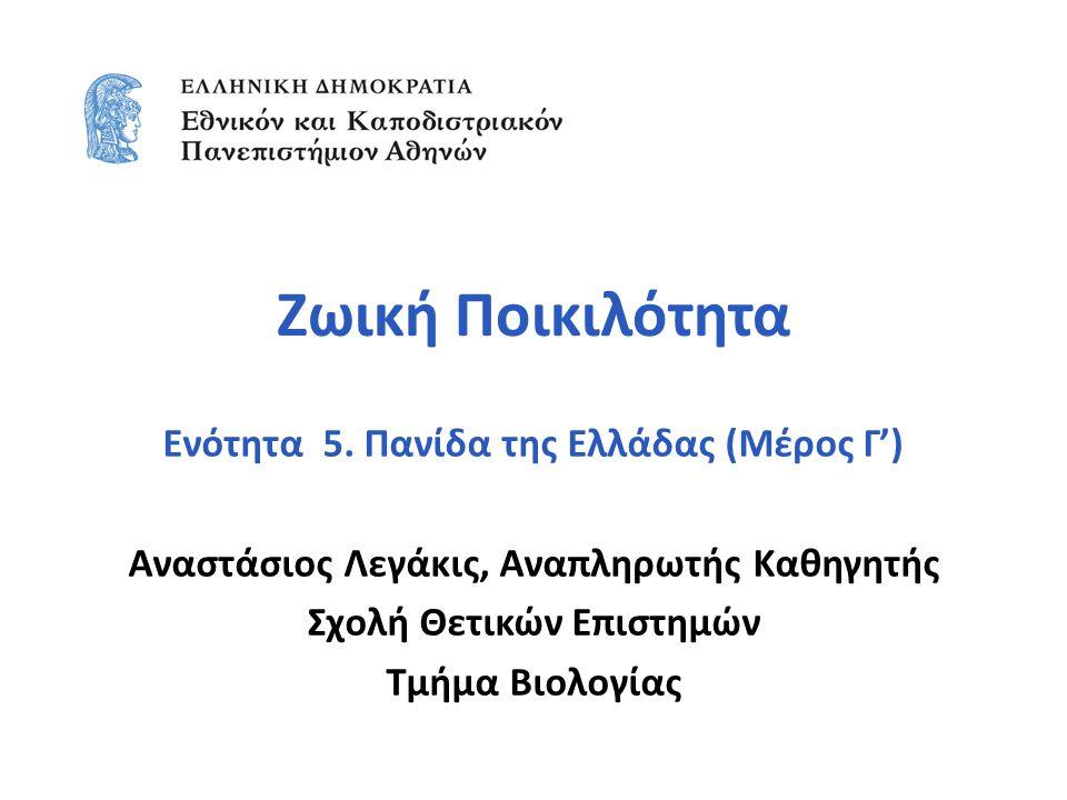 Ζωική Ποικιλότητα Ενότητα 5. Πανίδα της Ελλάδας (Μέρος Γ') Αναστάσιος Λεγάκις, Αναπληρωτής Καθηγητής Σχολή Θετικών Επιστημών Τμήμα Βιολογίας