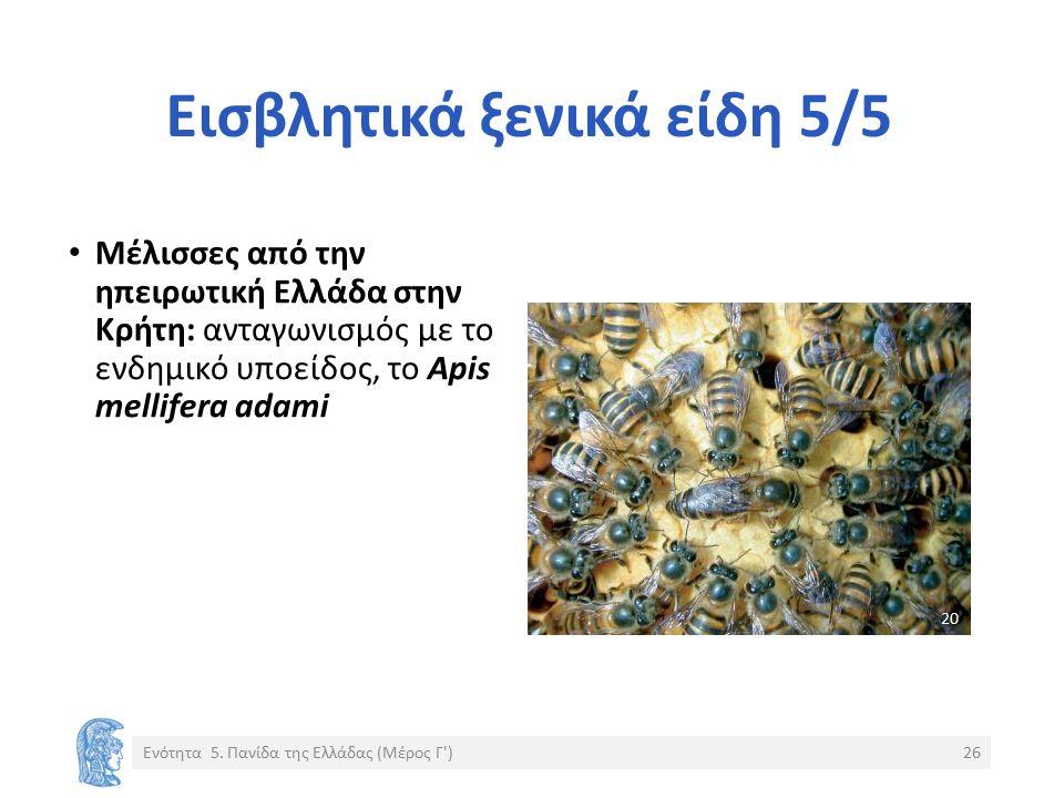 Εισβλητικά ξενικά είδη 5/5 Μέλισσες από την ηπειρωτική Ελλάδα στην Κρήτη: ανταγωνισμός με το ενδημικό υποείδος, το Apis mellifera adami Ενότητα 5.