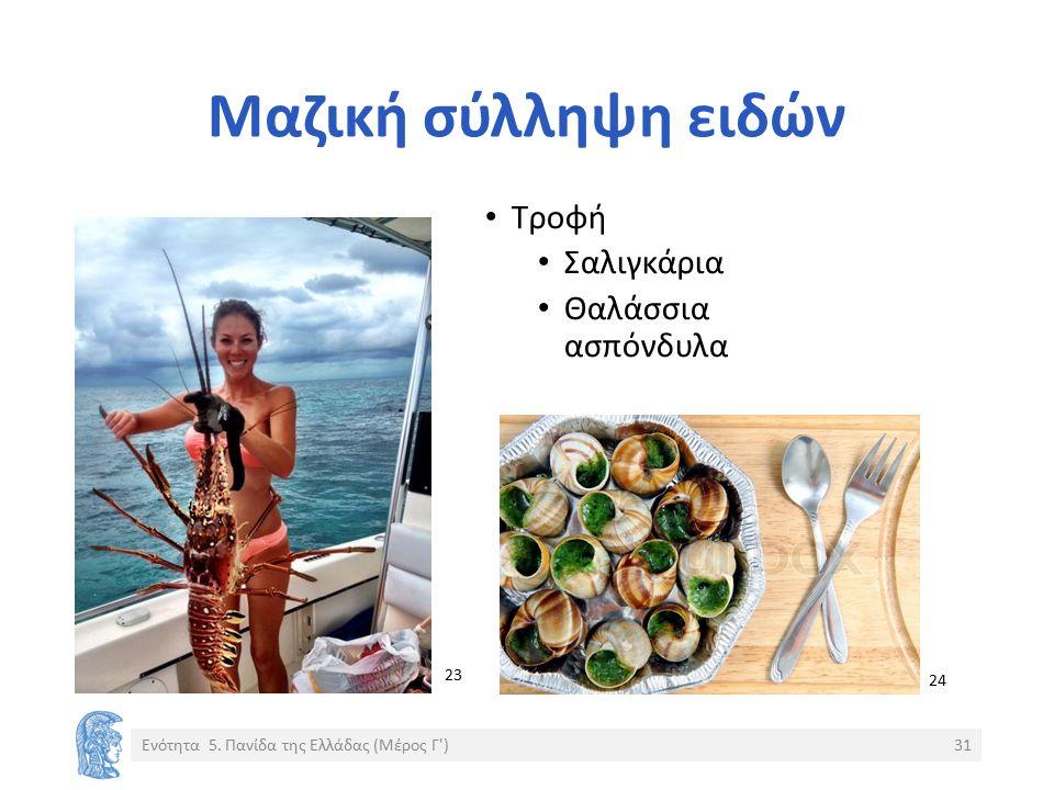 Μαζική σύλληψη ειδών Ενότητα 5. Πανίδα της Ελλάδας (Μέρος Γ')31 Τροφή Σαλιγκάρια Θαλάσσια ασπόνδυλα 23 24 2323