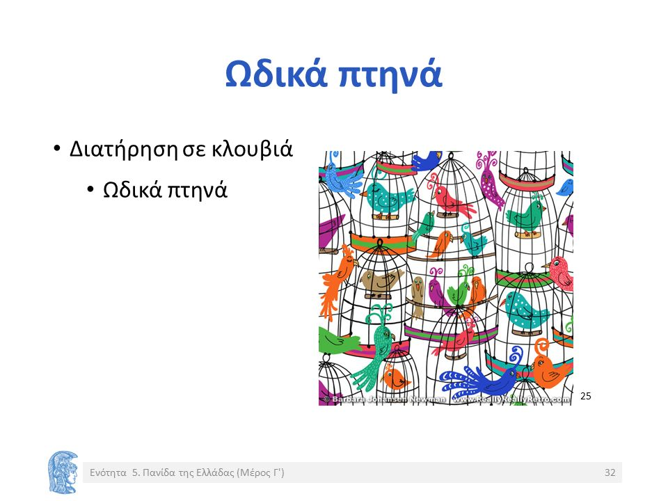 Ωδικά πτηνά Διατήρηση σε κλουβιά Ωδικά πτηνά Ενότητα 5. Πανίδα της Ελλάδας (Μέρος Γ )32 25