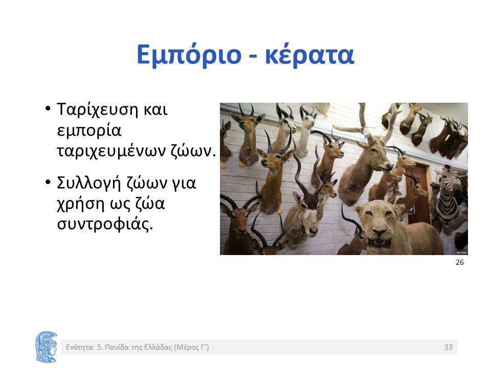 Εμπόριο - κέρατα Ταρίχευση και εμπορία ταριχευμένων ζώων. Συλλογή ζώων για χρήση ως ζώα συντροφιάς. Ενότητα 5. Πανίδα της Ελλάδας (Μέρος Γ')33 26 2626