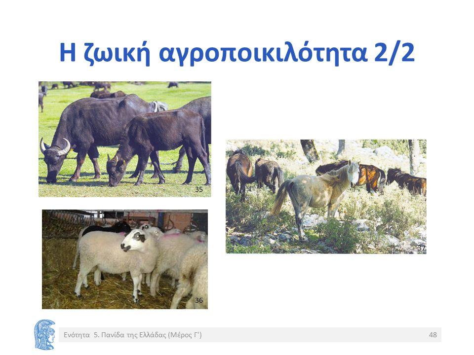 Η ζωική αγροποικιλότητα 2/2 Ενότητα 5. Πανίδα της Ελλάδας (Μέρος Γ )48 35 36 37