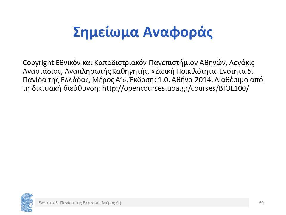 Σημείωμα Αναφοράς Copyright Εθνικόν και Καποδιστριακόν Πανεπιστήμιον Αθηνών, Λεγάκις Αναστάσιος, Αναπληρωτής Καθηγητής. «Zωική Ποικιλότητα. Ενότητα 5.