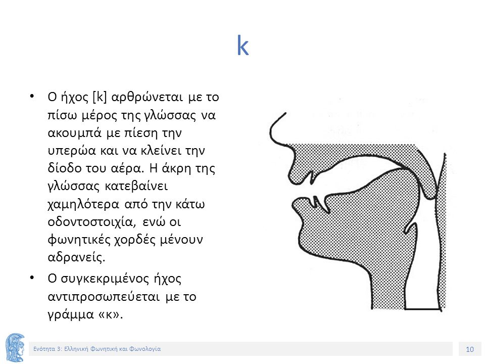 10 Ενότητα 3: Ελληνική Φωνητική και Φωνολογία k Ο ήχος [k] αρθρώνεται με το πίσω μέρος της γλώσσας να ακουμπά με πίεση την υπερώα και να κλείνει την δίοδο του αέρα.