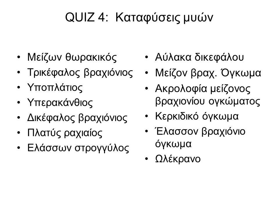 QUIZ 4: Καταφύσεις μυών Μείζων θωρακικός Τρικέφαλος βραχιόνιος Υποπλάτιος Υπερακάνθιος Δικέφαλος βραχιόνιος Πλατύς ραχιαίος Ελάσσων στρογγύλος Αύλακα δικεφάλου Μείζον βραχ.