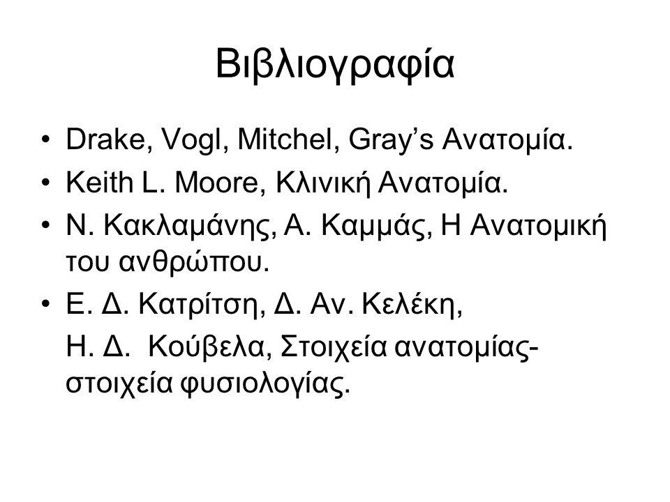 Βιβλιογραφία Drake, Vogl, Mitchel, Gray's Ανατομία. Keith L. Moore, Kλινική Ανατομία. Ν. Κακλαμάνης, Α. Καμμάς, H Ανατομική του ανθρώπου. Ε. Δ. Κατρίτ