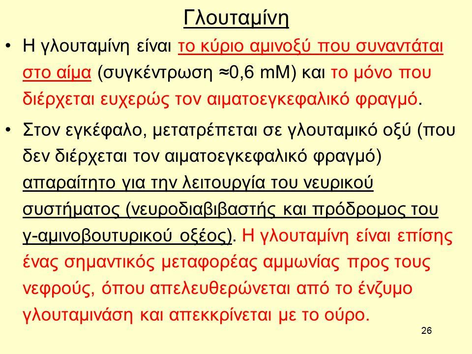 26 Γλουταμίνη Η γλουταμίνη είναι το κύριο αμινοξύ που συναντάται στο αίμα (συγκέντρωση ≈0,6 mM) και το μόνο που διέρχεται ευχερώς τον αιματοεγκεφαλικό φραγμό.