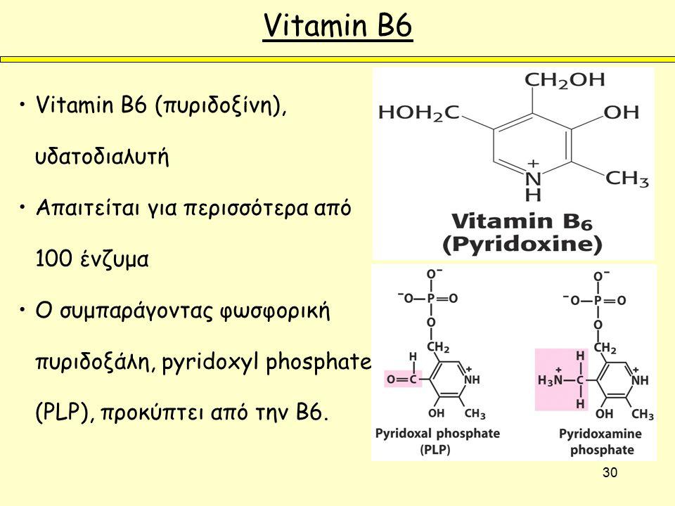 30 Vitamin B6 Vitamin B6 (πυριδοξίνη), υδατοδιαλυτή Απαιτείται για περισσότερα από 100 ένζυμα Ο συμπαράγοντας φωσφορική πυριδοξάλη, pyridoxyl phosphate (PLP), προκύπτει από την B6.