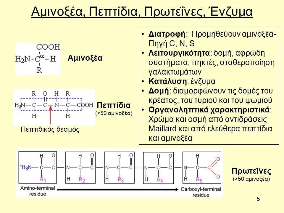 5 Αμινοξέα, Πεπτίδια, Πρωτεΐνες, Ένζυμα Αμινοξέα Πεπτίδια (<50 αμινοξέα) Πρωτεΐνες (>50 αμινοξέα) Διατροφή: Προμηθεύουν αμινοξέα- Πηγή C, N, S Λειτουργικότητα: δομή, αφρώδη συστήματα, πηκτές, σταθεροποίηση γαλακτωμάτων Κατάλυση: ένζυμα Δομή: διαμορφώνουν τις δομές του κρέατος, του τυριού και του ψωμιού Οργανοληπτικά χαρακτηριστικά: Χρώμα και οσμή από αντιδράσεις Maillard και από ελεύθερα πεπτίδια και αμινοξέα Πεπτιδικός δεσμός