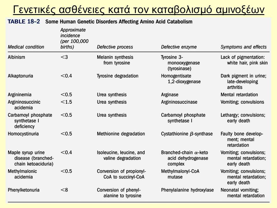 59 Γενετικές ασθένειες κατά τον καταβολισμό αμινοξέων