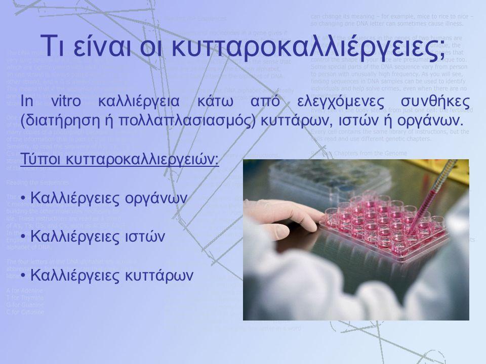 In vitro καλλιέργεια κάτω από ελεγχόμενες συνθήκες (διατήρηση ή πολλαπλασιασμός) κυττάρων, ιστών ή οργάνων. Τύποι κυτταροκαλλιεργειών: Καλλιέργειες ορ