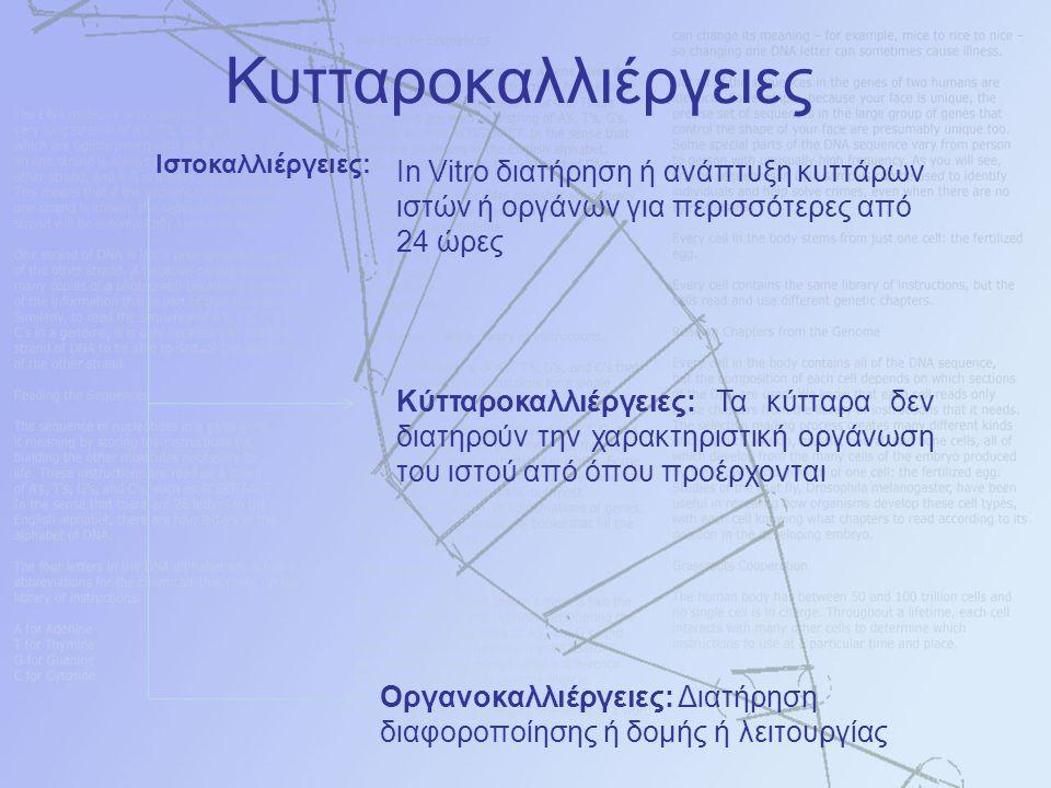 Ιστοκαλλιέργειες: Ιn Vitro διατήρηση ή ανάπτυξη κυττάρων ιστών ή οργάνων για περισσότερες από 24 ώρες Οργανοκαλλιέργειες: Διατήρηση διαφοροποίησης ή δ