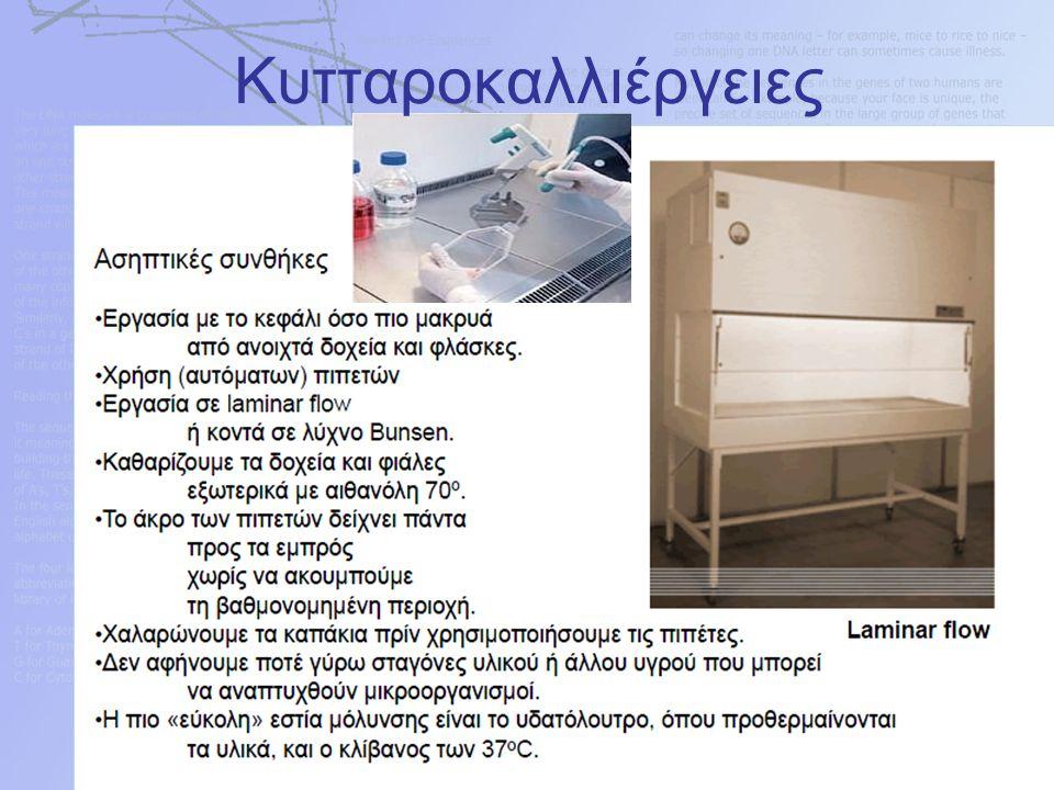 ΚΥΤΤΑΡΟΚΑΛΛΙΕΡΓΕΙΕΣ Η αποδιοργάνωση του ιστού γίνεται με πρωτεάσες, όπως η θρυψίνη (ένζυμο του παγκρέατος) που έχει καθιερωθεί και αποτελεί κλασσικό μέσο αποδιοργάνωσης των ιστών (καταστρέφει την εξωκυττάρια ύλη των κυττάρων).