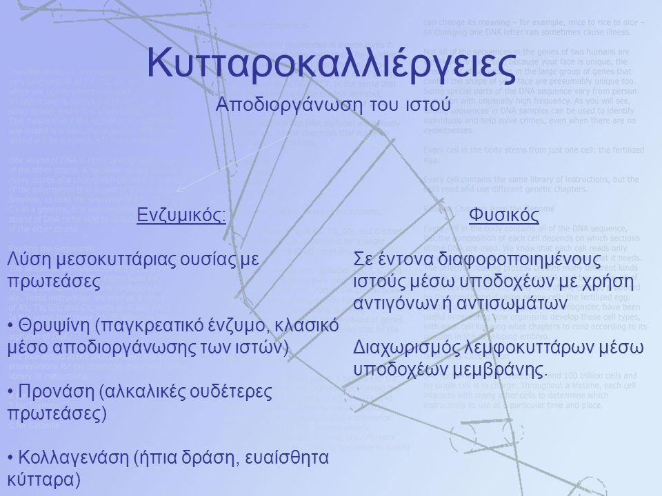 Αποδιοργάνωση του ιστού Ενζυμικός: Λύση μεσοκυττάριας ουσίας με πρωτεάσες Θρυψίνη (παγκρεατικό ένζυμο, κλασικό μέσο αποδιοργάνωσης των ιστών) Προνάση (αλκαλικές ουδέτερες πρωτεάσες) Κολλαγενάση (ήπια δράση, ευαίσθητα κύτταρα) Φυσικός Σε έντονα διαφοροποιημένους ιστούς μέσω υποδοχέων με χρήση αντιγόνων ή αντισωμάτων Διαχωρισμός λεμφοκυττάρων μέσω υποδοχέων μεμβράνης.
