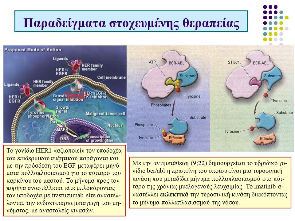 Παραδείγματα στοχευμένης θεραπείας Το γονίδιο HER1 «αξιοποιεί» τον υποδοχέα του επιδερμικού αυξητικού παράγοντα και με την πρόσδεση του EGF μεταφέρει μηνύ- ματα πολλαπλασιασμού για το κύτταρο του καρκίνου του μαστού.