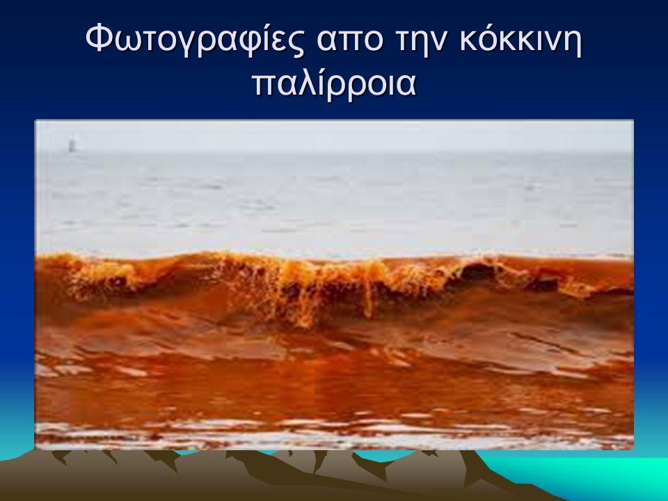 Φωτογραφίες απο την κόκκινη παλίρροια