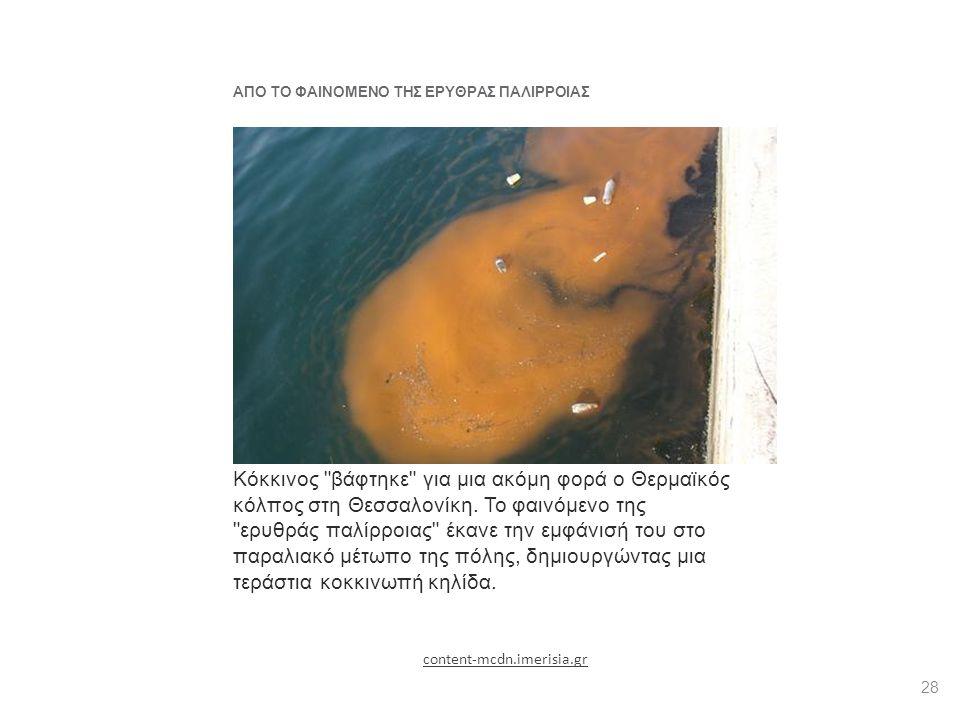 ΑΠΟ ΤΟ ΦΑΙΝΟΜΕΝΟ ΤΗΣ ΕΡΥΘΡΑΣ ΠΑΛΙΡΡΟΙΑΣ Κόκκινος «βάφτηκε» ο Θερμαϊκός Κόκκινος βάφτηκε για μια ακόμη φορά ο Θερμαϊκός κόλπος στη Θεσσαλονίκη.