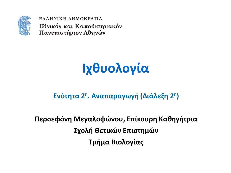 Ιχθυολογία Ενότητα 2 η. Αναπαραγωγή (Διάλεξη 2 η ) Περσεφόνη Μεγαλοφώνου, Επίκουρη Καθηγήτρια Σχολή Θετικών Επιστημών Τμήμα Βιολογίας