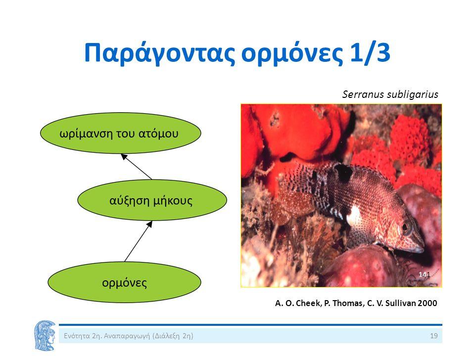 A. O. Cheek, P. Thomas, C. V. Sullivan 2000 Παράγοντας ορμόνες 1/3 Serranus subligarius Ενότητα 2η. Αναπαραγωγή (Διάλεξη 2η)19 141